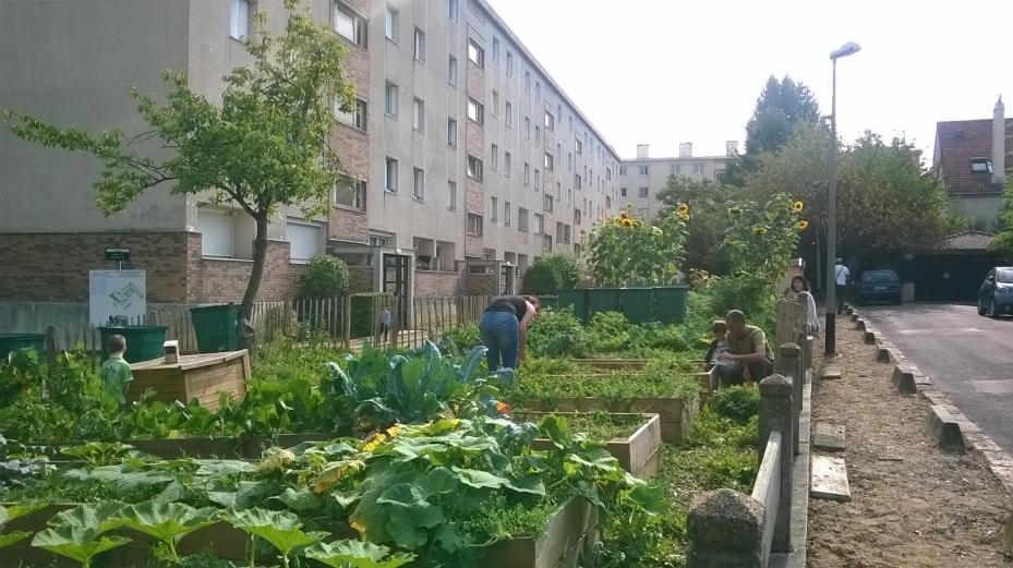 Agriculture urbaine à Créteil