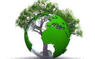 Une nouvelle voie de développement : le bien-vivre